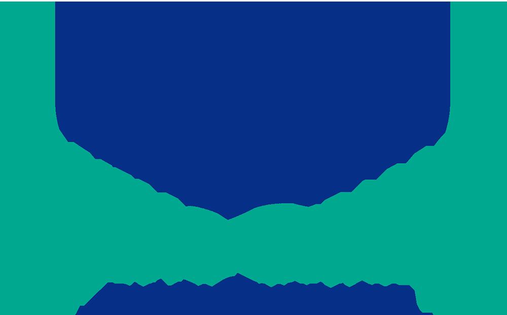 Flying Change Logo